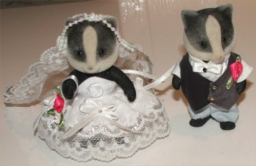 Badger bride & groom