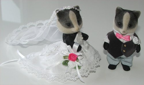 Badger bride & groom 2